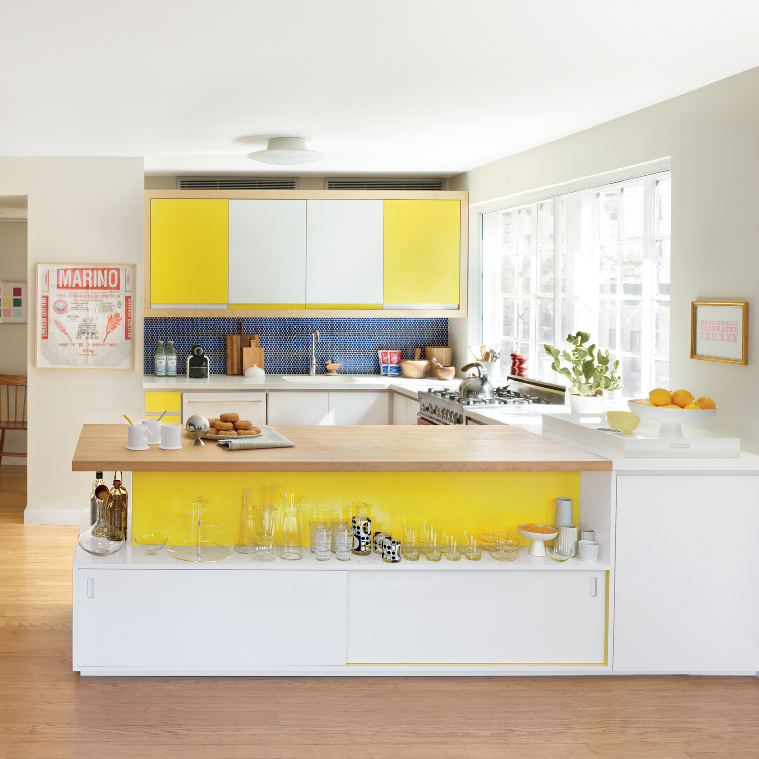 annie-schlechter-kitchen-bold-color-mld107949_sq