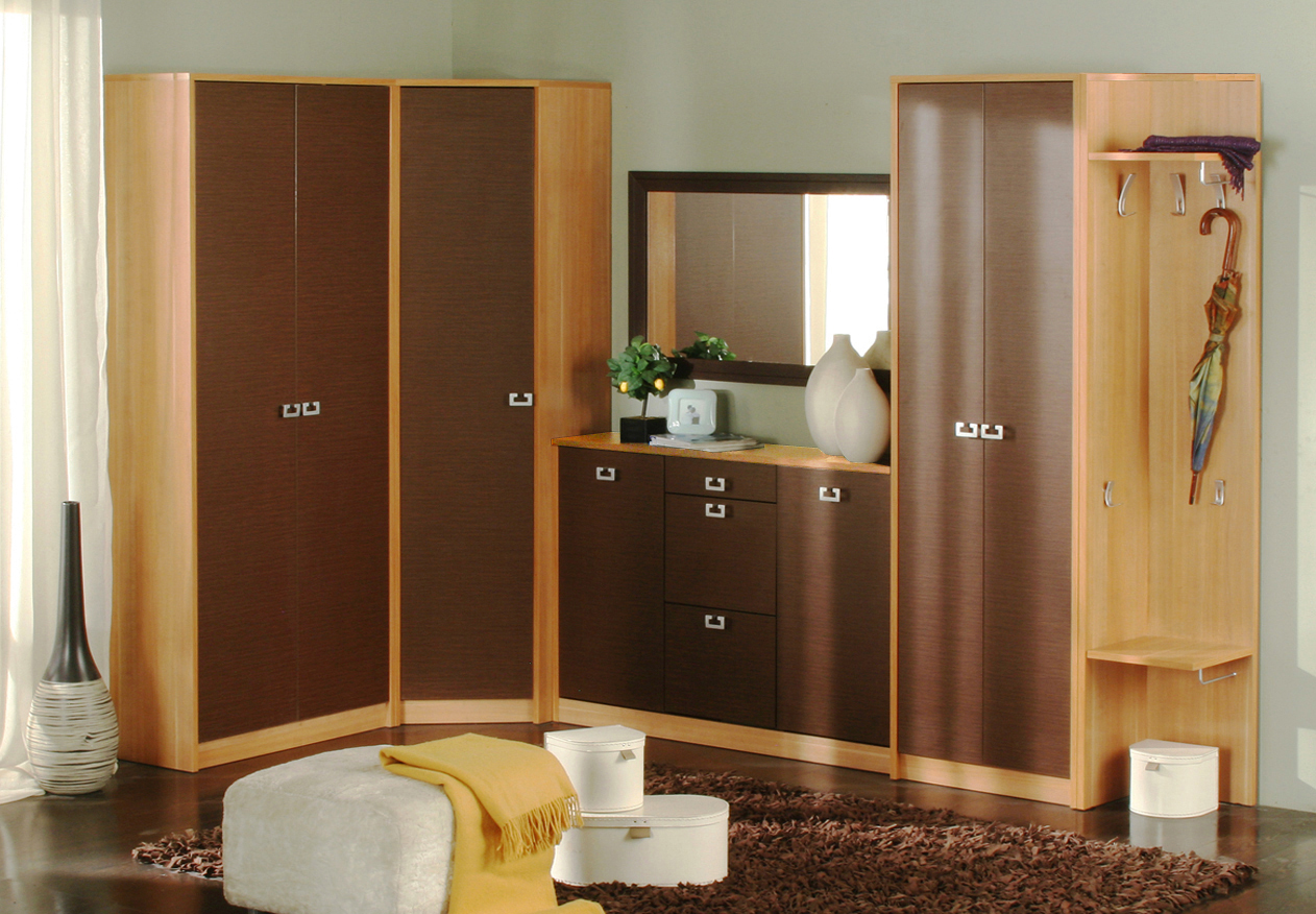 cupboard-designs-for-hall-5