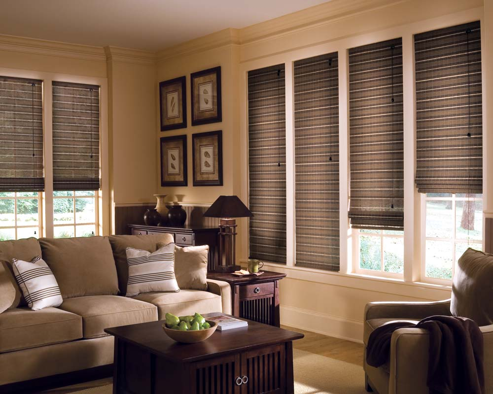 mesmerizing-living-room-blinds-18-style-provenance-cordlock-livingroom-8jpg