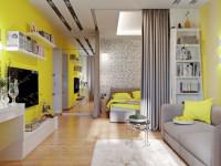 Современные идеи, как разделить комнату на две зоны (60+ фото)